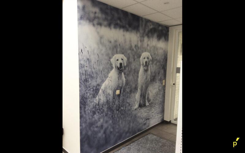 Anicura Liezele Indoor Signalisatie Publima 12