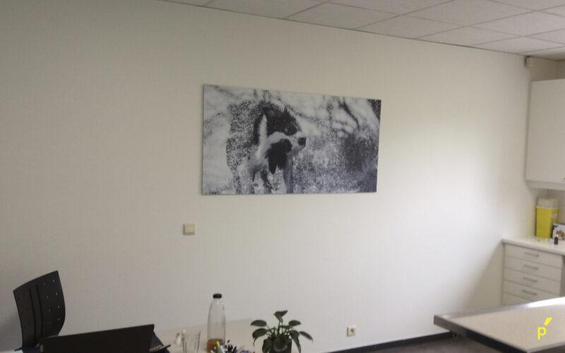 Anicura Liezele Indoor Signalisatie Publima 16