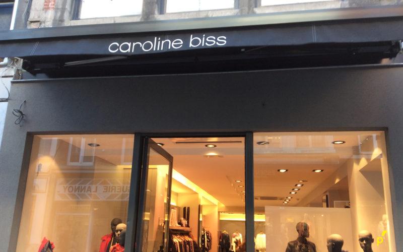 13 Gevelletters Carolinebiss Publima